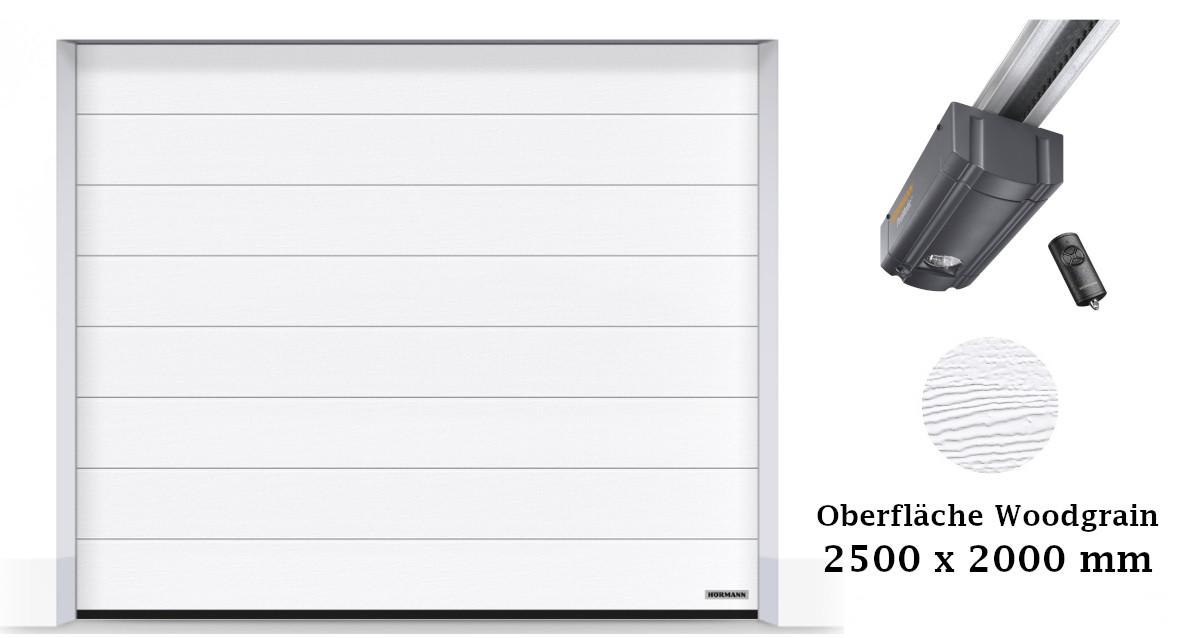 Hörmann Sektionaltor M-Sicke 2500 x 2000 mm weiß mit ProMatic