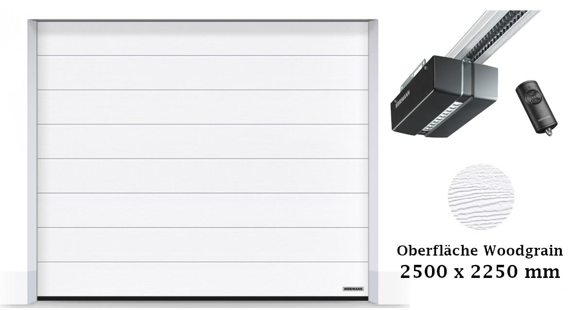 Hörmann Sektionaltor M-Sicke 2500 x 2250 mm weiß mit ProMatic