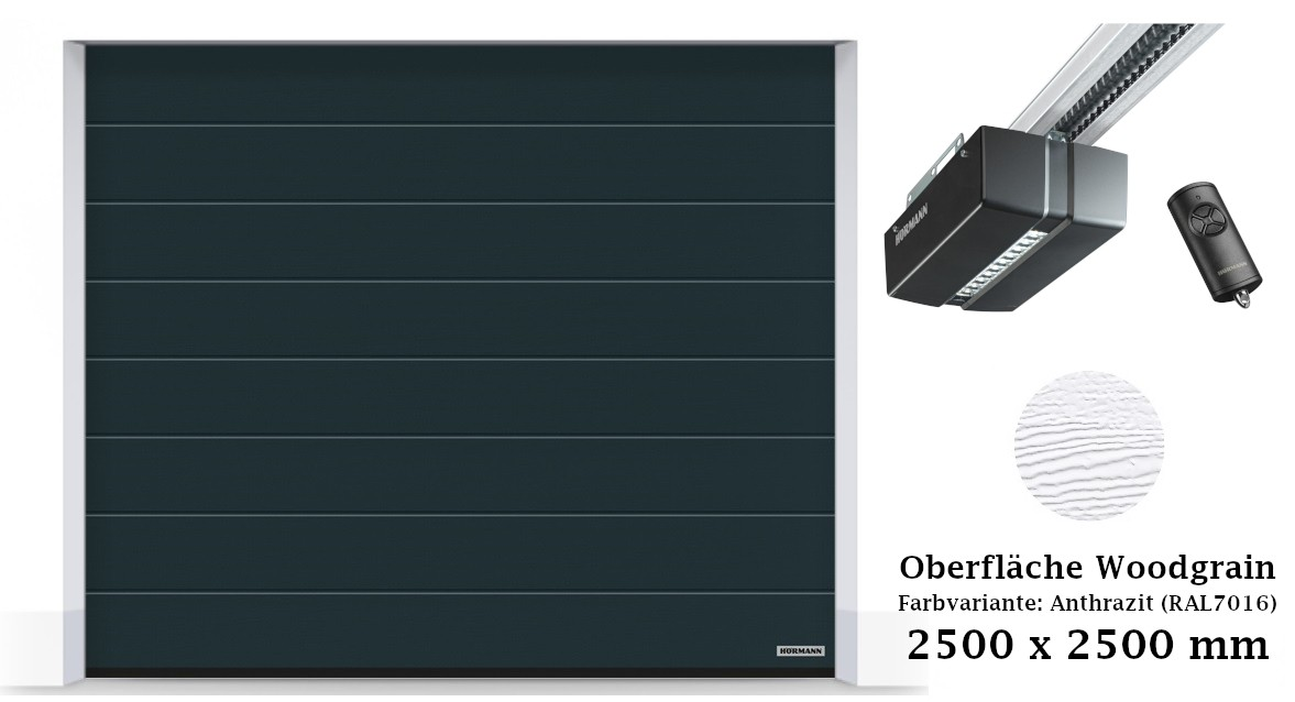 Hörmann Sektionaltor M-Sicke 2500 x 2500 mm anthrazit mit ProMatic